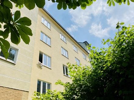 rustikal und gemütlich - 3-Raumwohnung mit Tageslichtbad - Chemnitz Kaßberg zu vermieten