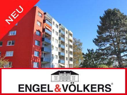 Engel&Völkers Bad Salzuflen