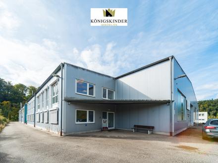 Repräsentative Büro-/ Lager- und Produktionsflächen in guter Lage an der Bundesstraße 19!