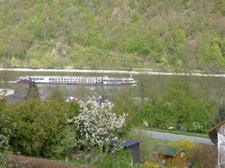 Aussicht auf Donau