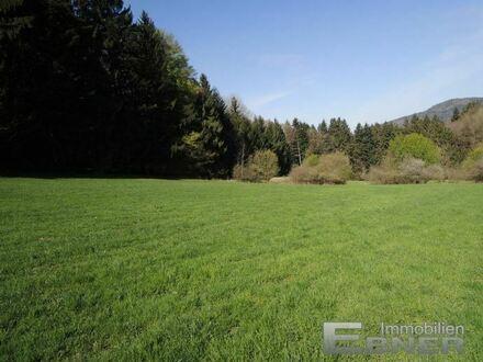 Schönes Freizeitgrundstück Nähe Hengersberg