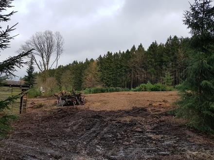 Zwei Villen-Baugrundstücke(nebeneinander) in herrlicher Waldrandlage von Niedernhausen-Wildpark!