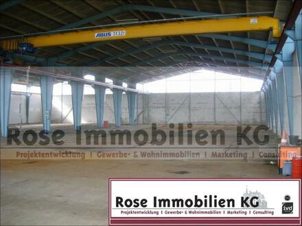 ROSE IMMOBILIEN KG: 1000m² Lager-/ Kalthalle mit Kranbahnen in Vlotho