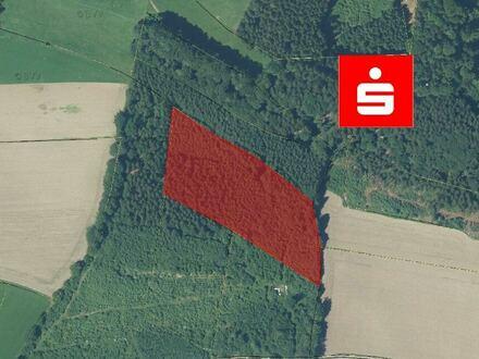 Wald in Seeon zu verkaufen