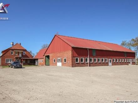 31 ha Heidelbeerplantage mit Gebäuden
