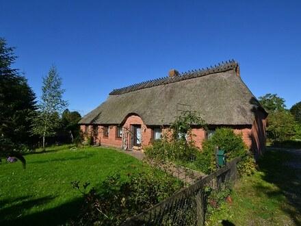 Reetdachhaus mit zwei Wohnungen und angrenzender Landwirtschaftsfläche