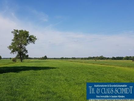 6,6 Hektar Grünlandflächen zur Reinvestition oder zur Selbstnutzung zw. OL und Brake