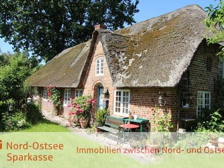 Eines der letzten historischen Reetdach-Friesenhäuser am Stadtrand von Niebüll