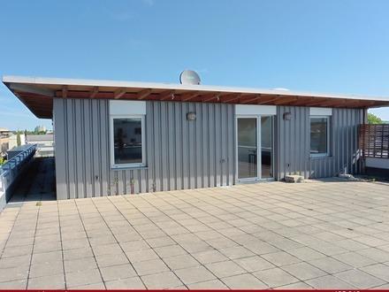 Top gepflegtes und vielseitiges Gewerbeobjekt - Büros, Hallen und eine Wohnung mit tollen Terrassen