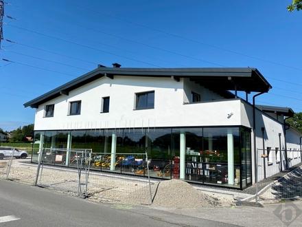 Home & office endlich vereint: 3 Zimmerwohnung mit sonniger Terrasse & anschließendem Büro zur Miete