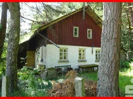 sanierungsbedürftiges Ferienhaus in idyllischer Ortsrandlage bei Bischofsmais