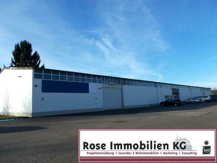 Rose Immobilien KG: Vermietete Lager- und Verkaufshalle in Stadthagen zu verkaufen!