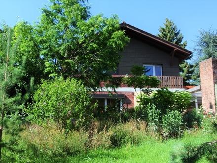 Eine grüne Oase in Oppau