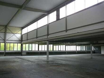 Gepflegte Hallenfläche mit guter Anbindung zur A 33