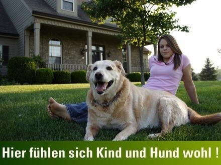 Hier-fuehlen-sich-Kind-und-Hund-wohl