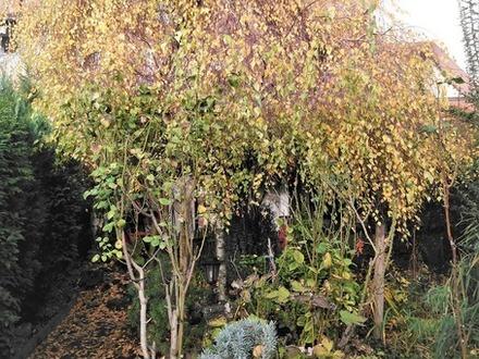 Mehrfamilienhaus mit tollem Garten, teilweise sanierungsbedürftig!