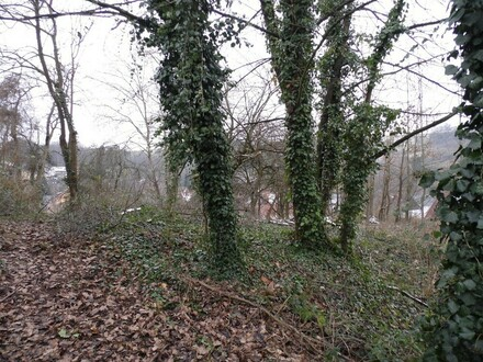 Preiswertes Grundstück in Leidersbach