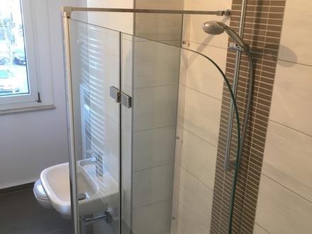 neu und komplett hochwertig sanierte 2-Raum Wohnung am Rande von Zwickau/Hüttelsgrün