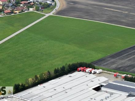 bis 12.500 m² Betriebsgebiet (dzt. in Umwidmung / auch teilbar) Grenzgebiet zu Salzburg in Franking