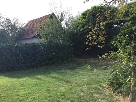 Verkauf gegen Höchstgebot! Grundstück mit Abrisshaus!