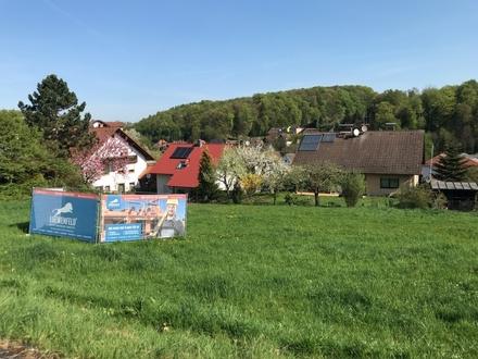 Familienfreundliches und bezahlbares Wohnen im Grünen - Reihenendhaus Ausbauhaus