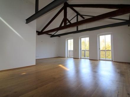 3-Zimmer-Loftwohnung - Über das komplette Dachgeschoss