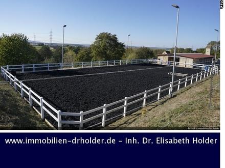 RESERVIERT !!! Schön gelegene Reitanlage mit Reitplatz, Koppeln und Bauplatz! Kauf, Ludwigsburg - Heilbronn