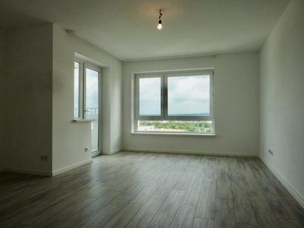 1-Zi.-Appartement mit Blick auf Main und See