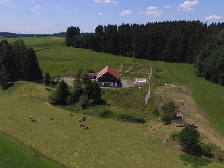Traumhaftes Anwesen mit 4 Wohnungen und 6 Pferdeboxen in Leutkich-Urlau/Allgäu