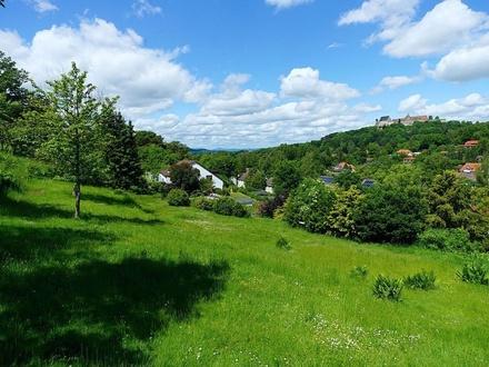 Diesen Ausblick können Sie kaufen: Baugrundstück mit Wald und Wiese mitten in Coburg