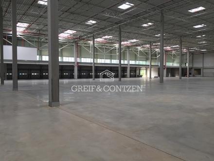 Neubauhalle mit Büro- u. Mezzaninefläche