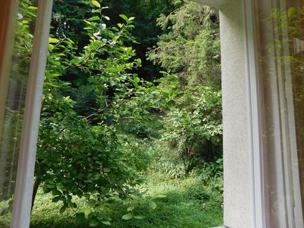 Entspannender Grünblick - Neuwaldegg zu einem fairen Preis!