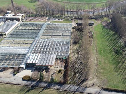 5 Minuten zur A4: großes Grundstück in Mosel zum Verkauf!