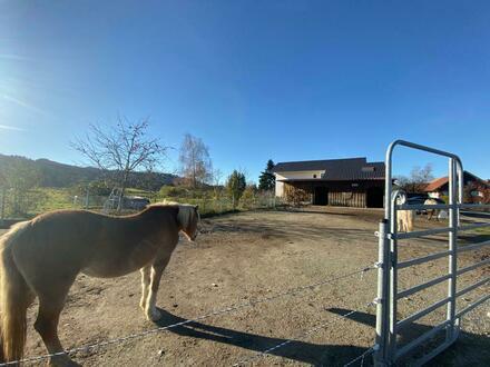 Landhaus für Pferdeliebhaber in ruhiger Lage