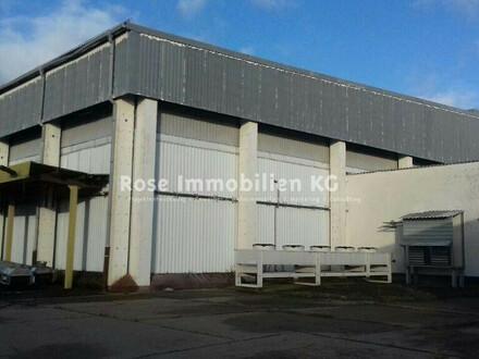 ROSE IMMOBILIEN KG: Lager-/Produktion zu verkaufen!