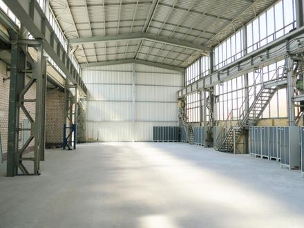 Top sanierte Halle mit 1.300 m² Fläche frei!