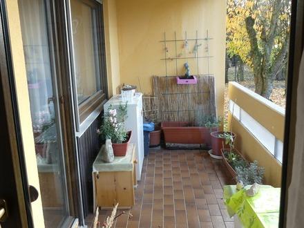 Schöne 2 Zimmer-Wohnung in zentraler Lage !!