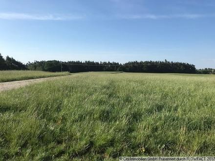 Große Landwirtschaftliche Fläche!