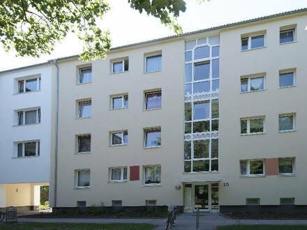 4 Zimmer in Schweizer Viertel