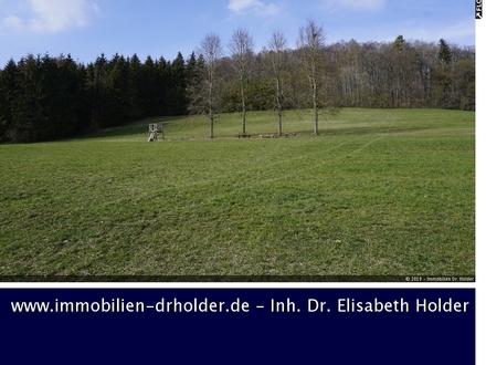 Viel Grünland und Wald am Stück, Grundstück, Kauf, St. Johann