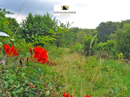 Naturliebhaber aufgepasst: Provisionsfreies Gartengrundstück in idyllischer Lage in S-Heumaden