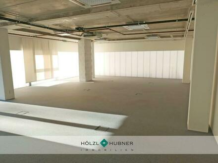 hoelzl hubner immobilien modernes buero mit showro