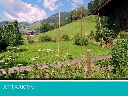 Ausatmen-Ankommen-Genießen! Romantische Doppelhaushälfte Goldegg - nahe der Naturoase Böndlsee