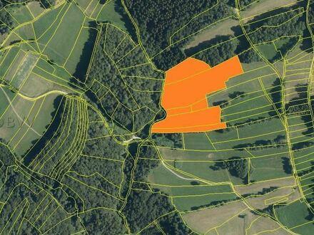 Landwirtschaftliche Flächen bei Schaufling !
