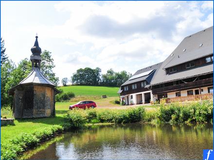Traditioneller Schwarzwaldhof * Idyllische Lage * ca. 25.000qm Grst.* Zi./Fewo/Studenten/Gaststätte
