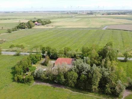 17 ha Land mit Resthof bei Esens