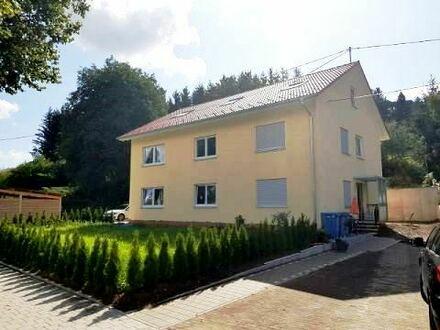 Gemütliche Dachgeschosswohnung - hell - modern - saniert