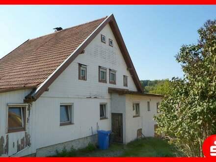 sanierungsbedürftige Doppelhaushälfte in Siedlungslage von Zwiesel