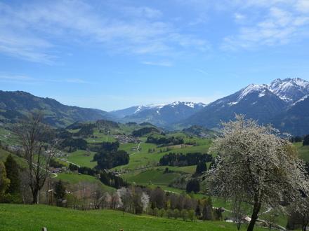 Historisches Bergbauernhaus in absoluter Alleinlage