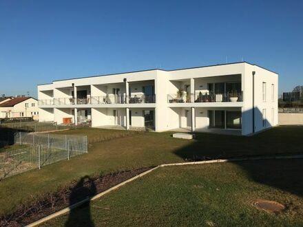 Vermiete Wohnung (Erstbezug) in Aspach Zentrum